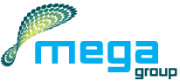 Page Executive for MegaGroup